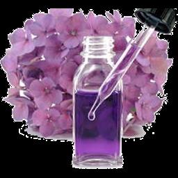 fiori di bach farmacia di latignano